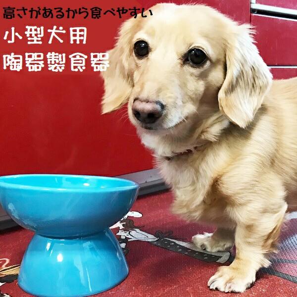 スケーター 小型犬用 食器 陶磁器製 ペット餌入れ マット付 ミント CHOB2