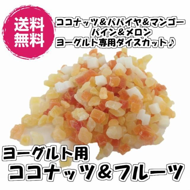 ヨーグルト専用 ココナッツ&フルーツ ヨーグルト用 500g ドライフルーツ 5種の味(ヨーグルトMIX500g)送料無料 チャック袋 業務用 お