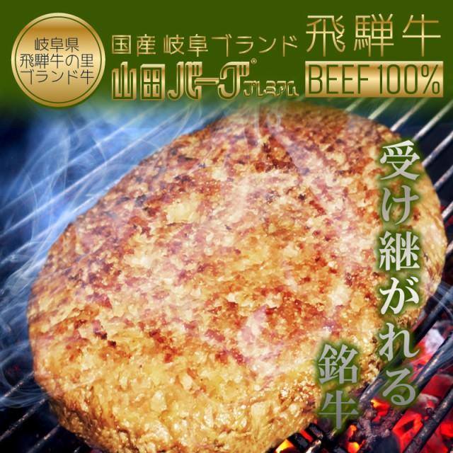 高級 国産 飛騨牛 ハンバーグ 山田バーグ プレミアム 1 350g 大きい BIG サイズ 美味しい 安心・安全 ISO導入工場生産 BBQ バーベキュー