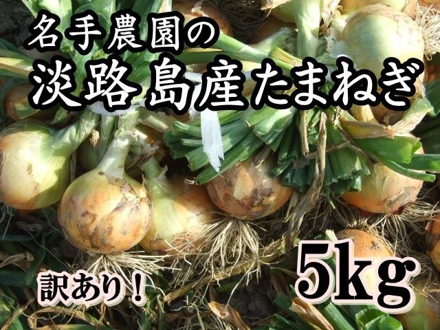 名手農園 淡路島玉ねぎ 5kg 訳あり地域限定送料無料でお届けいたします。