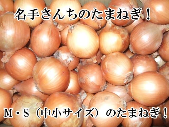 名手農園 淡路島産 たまねぎ 2021年産 玉ねぎ(訳あり)10kg 販売中(赤玉ねぎのおまけ付)