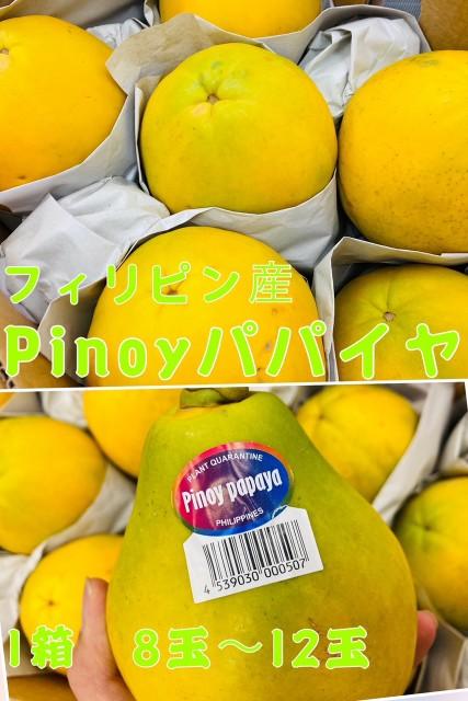 パパイヤ 1箱 8玉〜12玉 フィリピン産 フルーツパパイヤ Pinoy papaya 甘いパパイヤ