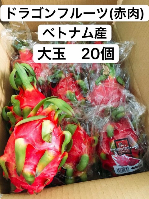 ドラゴンフルーツ 赤肉 ベトナム産 大玉 20個 送料無料
