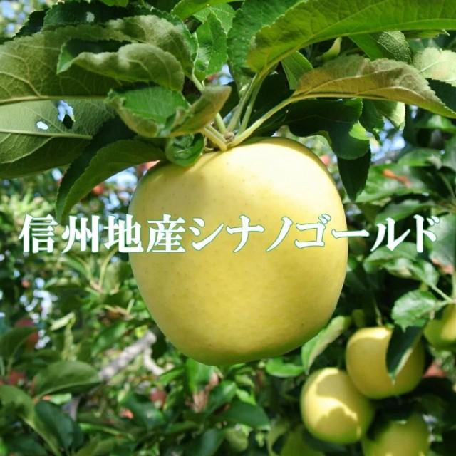 ご贈答に!信州りんご【シナノゴールド】秀品10kg!産地直送りんご