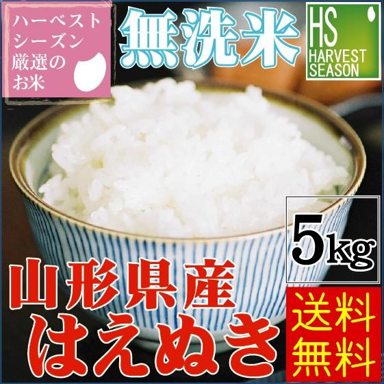 無洗米 特別栽培米 山形県産 はえぬき 5kg 令和元年産 【送料無料/北海道沖縄へは別途送料760円】