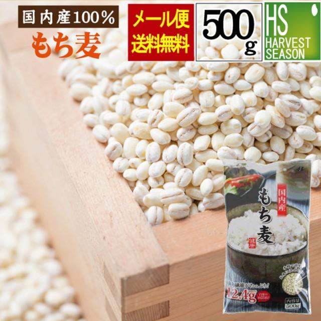 【メール便送料無料】国内産 もち麦500g βグルカン(水溶性食物繊維)が豊富♪(大麦)【ポイント消化やお試しに】
