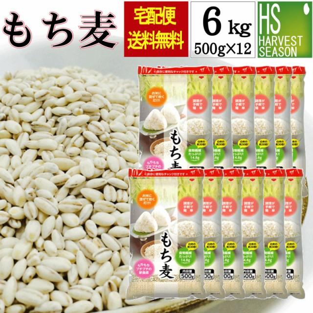 【送料無料】【お得なまとめ買い ケース販売】もち麦6kg(500g×12袋) (アメリカ産/大麦)【北海道沖縄は別途送料760円】