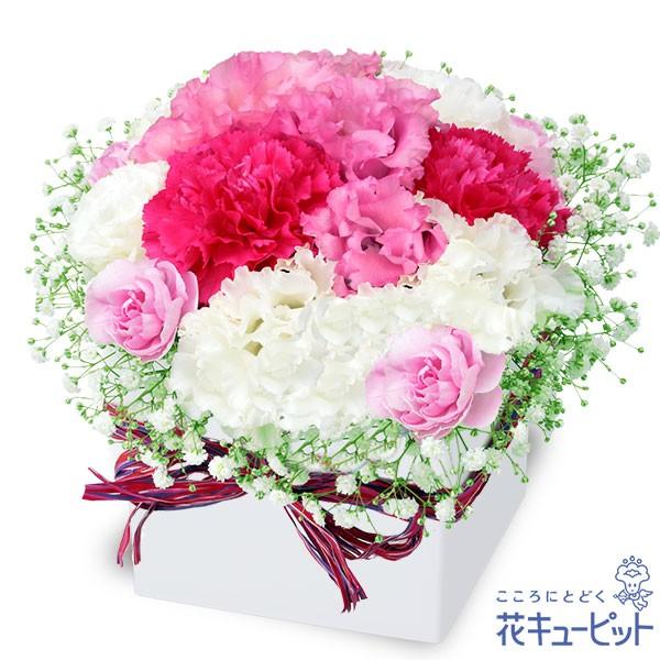 【ペット用フラワーギフト・お祝い】 花キューピットのトルコキキョウのロマンチックキューブ 花 お祝い 記念日 プレゼント nf01-511998
