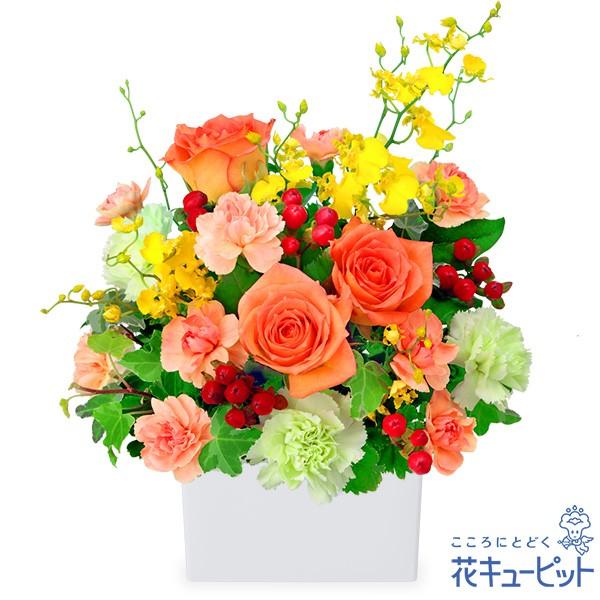 【開店祝い・開業祝い】 花キューピットのオレンジバラの華やかアレンジメント 花 ギフト お祝い プレゼントyf00-512053
