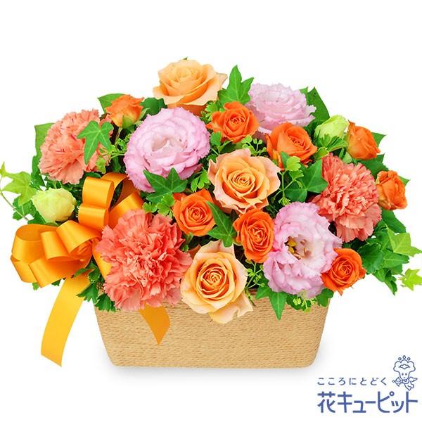 【お祝い返し】 花キューピットのオレンジバラとトルコキキョウのバスケット 花 ギフト お祝い 記念 感謝 お礼 プレゼントyu00-512127
