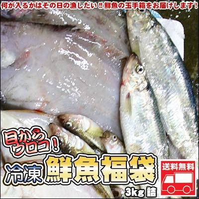 鮮魚を急速冷凍!北海道お魚福袋3kg 送料無料 ※沖縄は送料別途加算