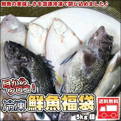鮮魚を急速冷凍!北海道お魚福袋5kg 送料無料 ※沖縄は送料別途加算