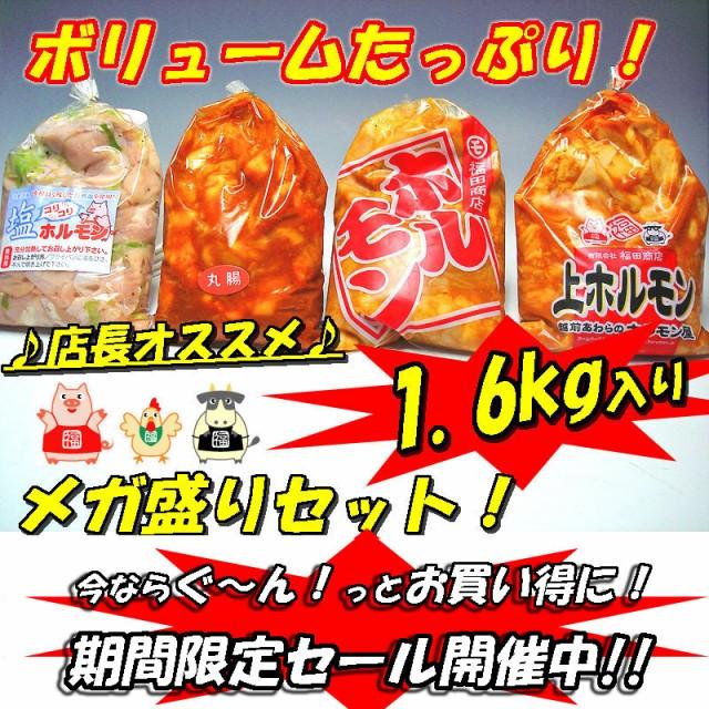 メガ盛りホルモンセット1.6kg バーベキュー 焼肉 B級グルメ 肉の日 肉 バーベキュー 送料無料 焼肉 もつ BBQ