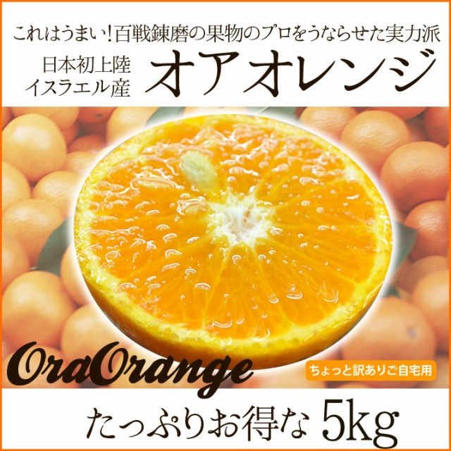 送料無料 みかん感覚で食べられるオアオレンジ 5kg(オラオレンジ) イスラエル産