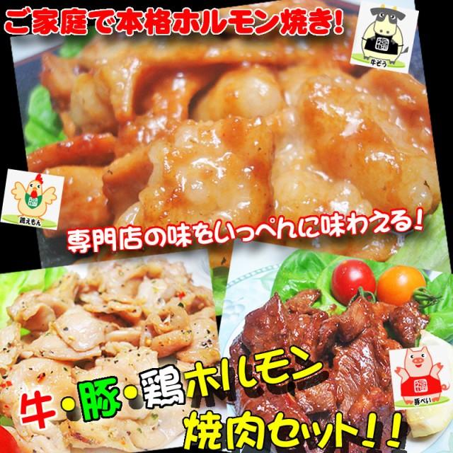 牛 豚 鶏ホルモン焼肉セット 肉 バーベキュー 焼肉 もつ BBQ 専門店の味