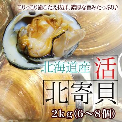 ほっき貝 活 送料無料 2kg 6-8個 北海道産 ホッキ貝 北寄貝 沖縄は送料別途加算