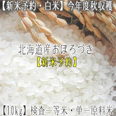 【新米 31年産 送料無料】北海道産 おぼろづき 10kg【検査一等米】北海道 農協 ホクレン入荷米なので安心安全な 北海道米【新b】