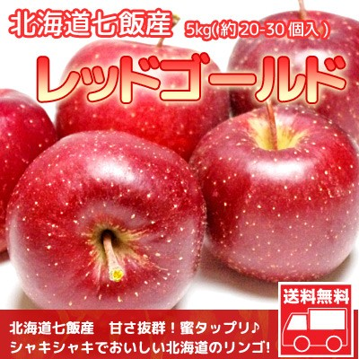 りんご 北海道産 蜜入 レッドゴールド リンゴ 5kg(約20-30個入) 送料無料※沖縄は送料別途加算