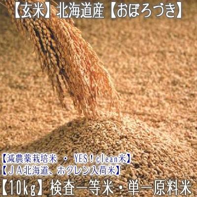 玄米【2年産 送料無料】北海道産 おぼろづき 10kg【一等米 10kg×1】北海道 農協 ホクレン入荷米なので安心安全【北海道米】【玄おぼ】