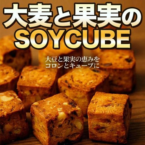 2箱セット 送料無料 大麦と果実のソイキューブ 800g  (200g×4袋 )×2箱