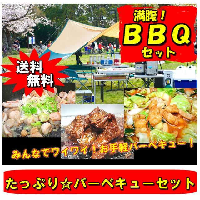 送料無料 バーベキュー用ホルモンセット 焼肉 BBQ