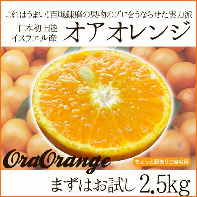 【送料無料】オアオレンジ(オラオレンジ)2.5kg