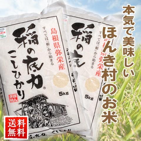 送料無料 30年 産お米 コシヒカリ 稲の底力 こしひかり 5kg×2(合計10kg) 国内産/グルメ 食品 ギフト お歳暮 御歳暮