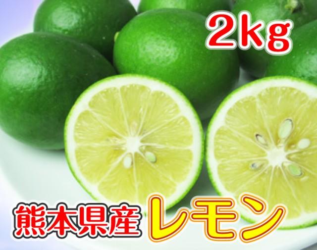 国産レモン 2kg 熊本県三角産 送料無料 サイズおまかせ ノーワックス 防腐剤不使用