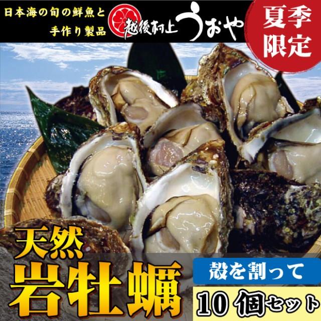 【日本海産】夏の味覚!天然岩牡蠣【10個セット】(殻を割ってお届け)/カキ/かき/お中元/生牡蠣/