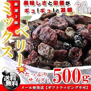 厳選ミックス♪ミックスベリー 500g/送料無料(レーズン ワイルドブルーベリー クランベリー)