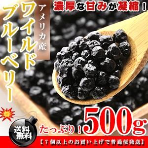 栄養満点★ワイルドブルーベリー お徳用 500g[アメリカ産]送料無料/ブルーベリー