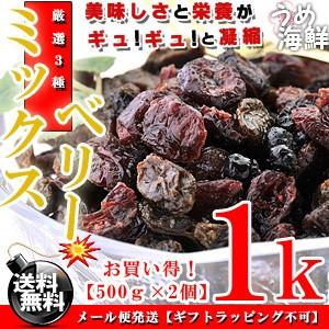 厳選ミックス♪ミックスベリー 1kg(500g×2個)送料無料(レーズン ワイルドブルーベリー クランベリー)