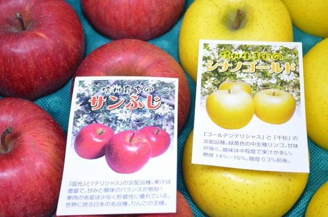 【送料無料】1箱で2つの味覚が楽しめる!信州産「サンふじ」&「シナノゴールド」中級ランク ミックス約5kg箱
