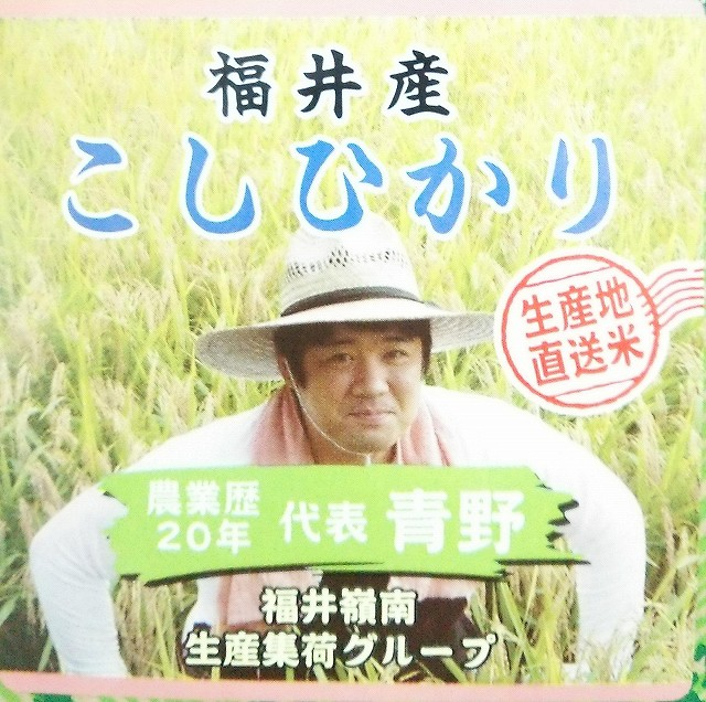 【契約栽培米】福井県産 こしひかり 5kg【農業が盛んな福井県】【白米】【けいやくさいばいまい】