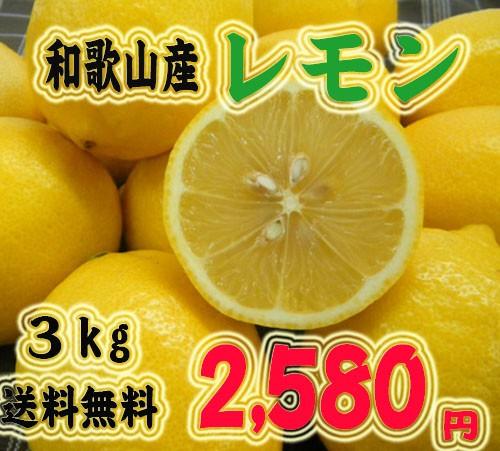 国産レモン! 和歌山産レモン3kg 2 580円【送料無料】【産地直送】