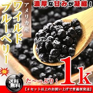 栄養満点★ワイルドブルーベリー お徳用 1kg(500g×2個)[アメリカ産]送料無料/ブルーベリー