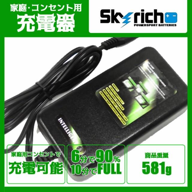 スカイリッチ社専用 リチウムイオンバッテリー充電器 新品 SKYRICH 専用 充電器