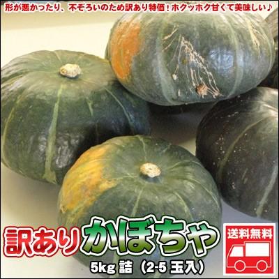 かぼちゃ 訳あり 北海道 5kg詰(2-5玉入)「送料無料」※沖縄は送料別途加算
