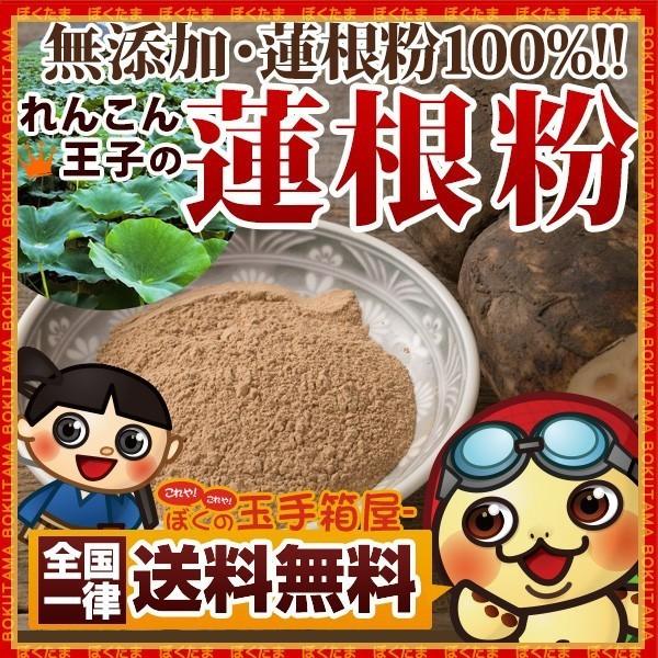 蓮根粉 (レンコンパウダー) 100g 徳島県産 送料無料