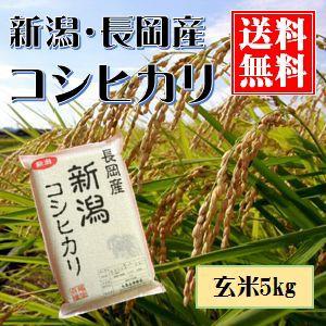 新潟産コシヒカリ(長岡産) 玄米 真空包装5kg 送料無料(本州のみ)