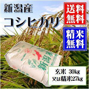 新潟産コシヒカリ 玄米30kg 又は 白米27kg小分け可 送料無料(本州のみ) お米