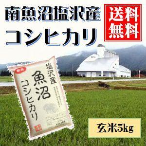 南魚沼産コシヒカリ(塩沢産)玄米 真空包装5kg 送料無料(本州のみ)