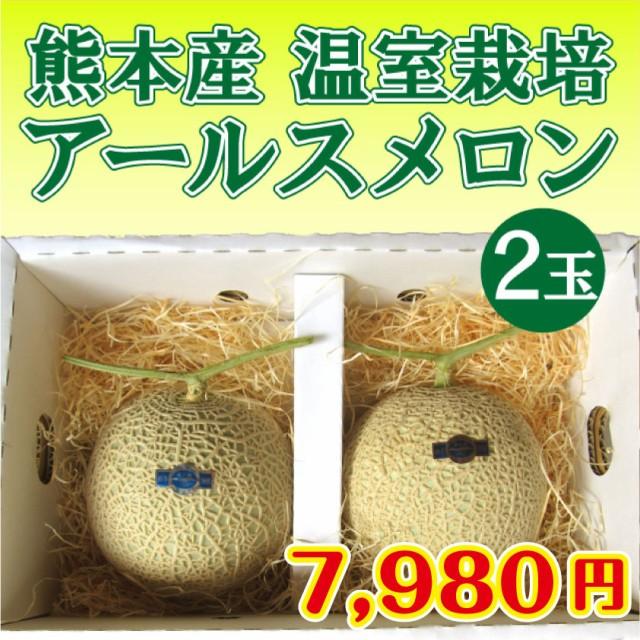 大切な方へのギフト用!高級アールスメロン(マスクメロン) 2個 1個1.3〜1.5kg程度 熊本鹿本産! ギフト梱包