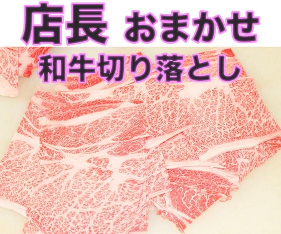 【送料無料】 店長おまかせ 北海道産和牛切り落とし 500g×2袋