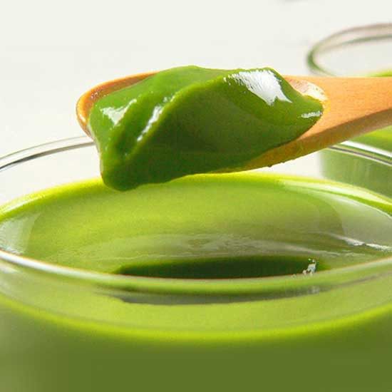 森半 宇治抹茶ぷりんの素(プリンミックス粉)80g [まったり、とろふわの抹茶プリンが、ポットのお湯で簡単に作れます] 宇治抹茶プリ