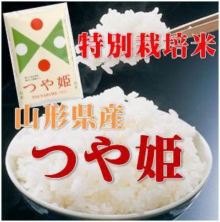 【送料無料】産地生産者限定 令和元年産 山形県産 特別栽培 つや姫 白米 10kg(5kg×2)