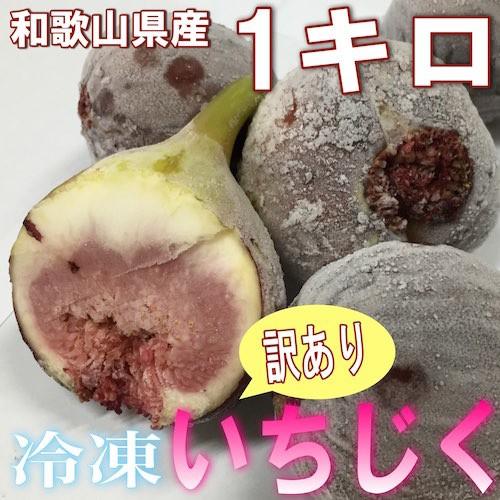 【送料無料】和歌山県産 訳あり 冷凍いちじく 1kg