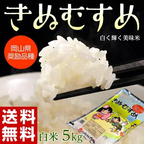 米 こめ コメ 白米 5キロ 送料無料 岡山県産 きぬむすめ 1袋 ※常温 産直 産地直送