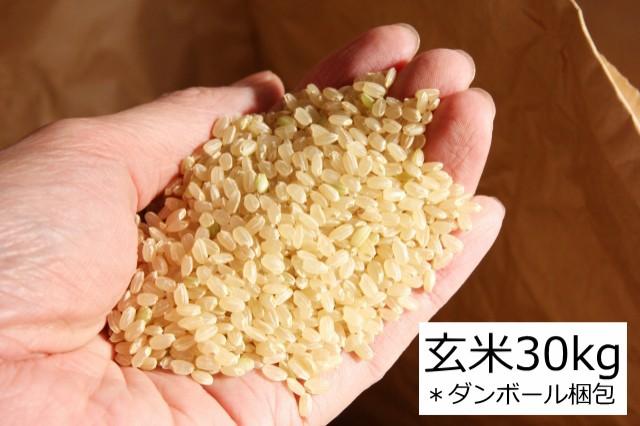玄米 30kg 送料無料 令和2年産 宮城県 登米産 ひとめぼれ 玄米 30kg 玄米食 健康食 西の魚沼・東の登米