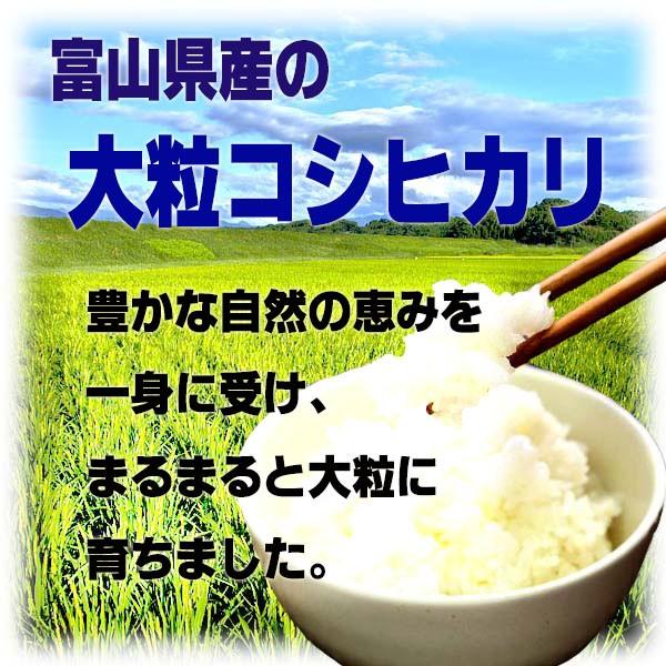 令和元年産 新米コシヒカリ無洗米10kg